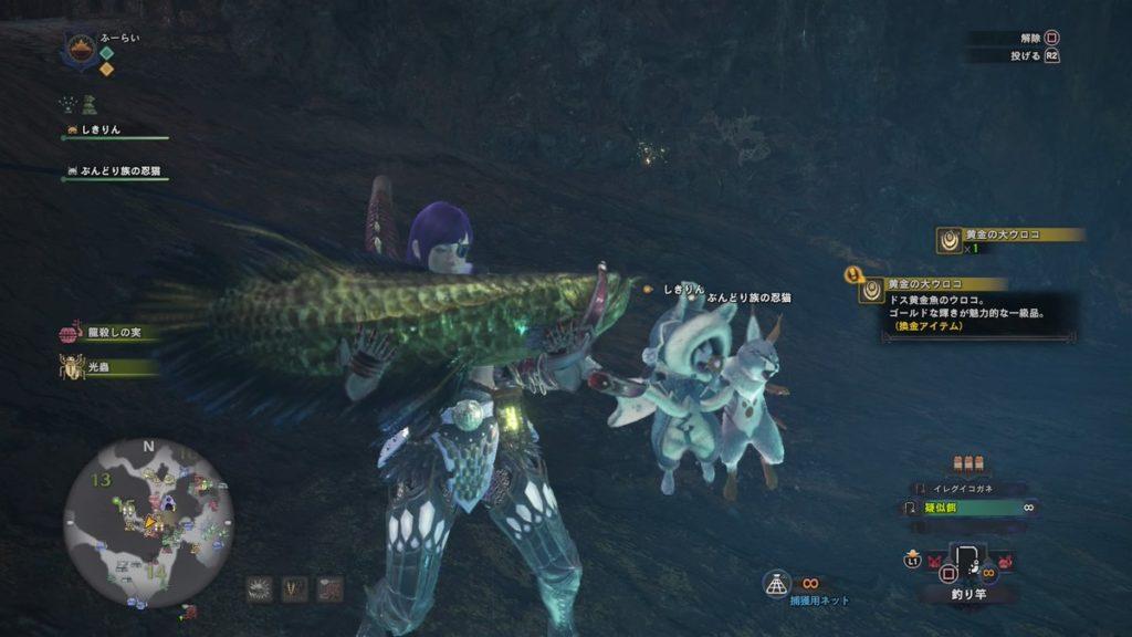 ドス黄金魚