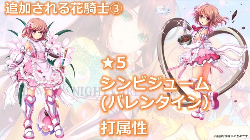 ★5シンビジューム(バレンタイン)